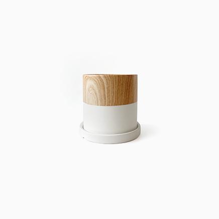Timbre White (M)